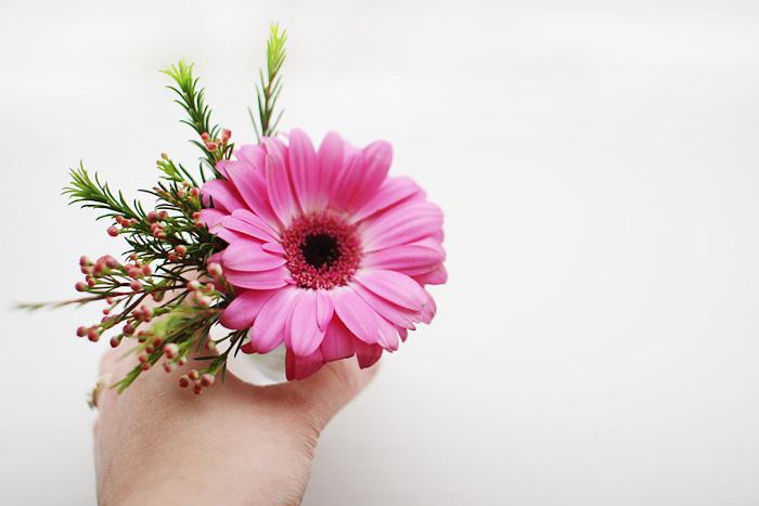 this week\'s flower... - elephantine