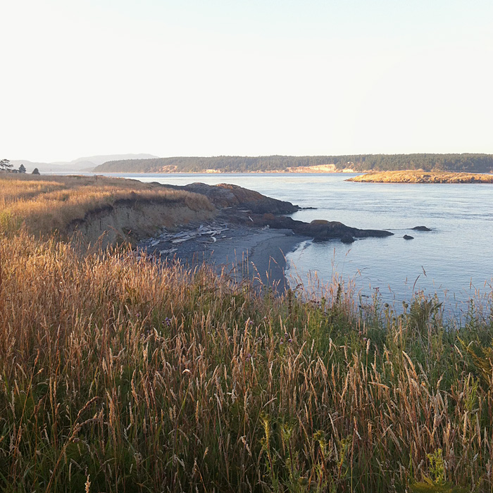 cattle point, san juan island | elephantine