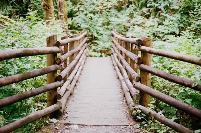 wallace falls hike | elephantine