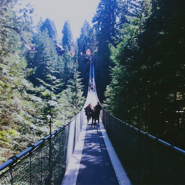 Capilano Suspension Bridge | Elephantine