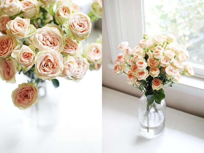 this week's flowers   elephantineblog.com